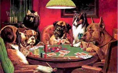 Et hundebur på spill